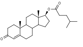 Testosterone_Isocaproate - Product number:110709